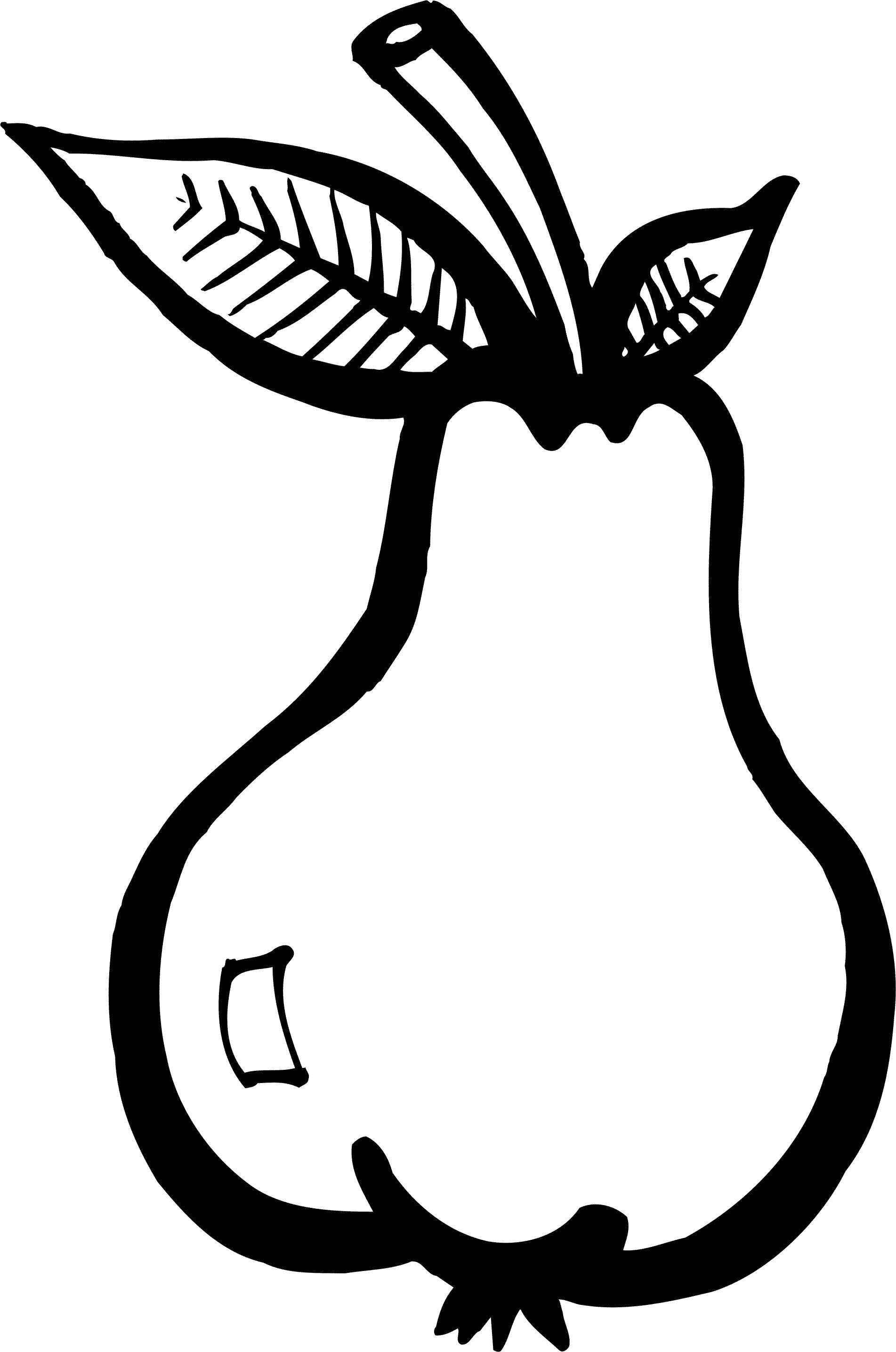 Раскраска Груша. Скачать груша.  Распечатать Фрукты