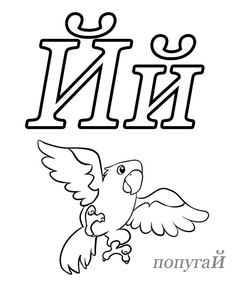 Раскраска детская азбука , попугай. Скачать Азбука.  Распечатать Азбука