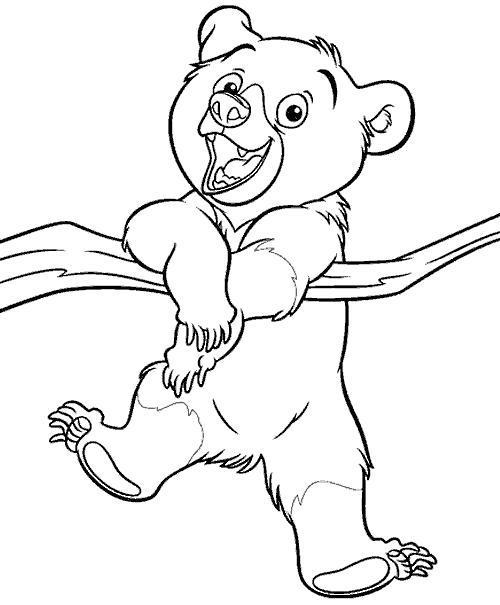 Раскраска братец медвежонок, медведь висит на ветке. Скачать Братец медвежонок.  Распечатать Братец медвежонок