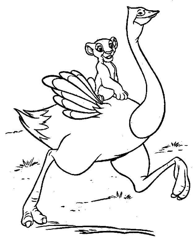 Раскраска Львёнок на страусе. Скачать Герои Диснея.  Распечатать Герои Диснея