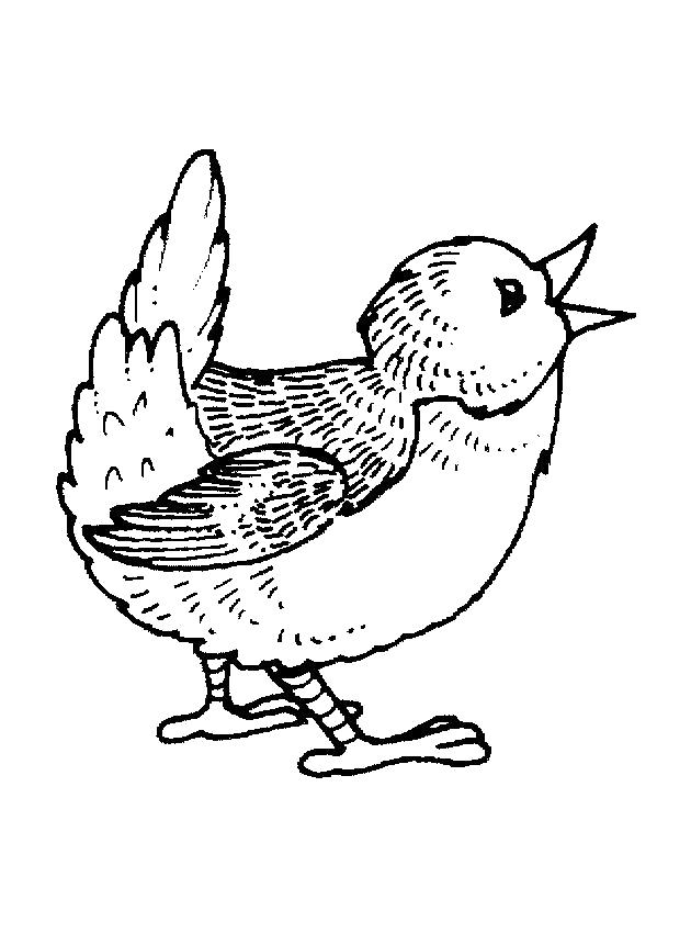 Раскраска птичка поет . Скачать Весна.  Распечатать Весна