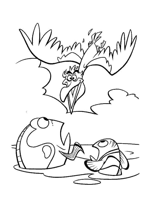 Раскраска птица и рыбы. Скачать в поисках Немо.  Распечатать в поисках Немо