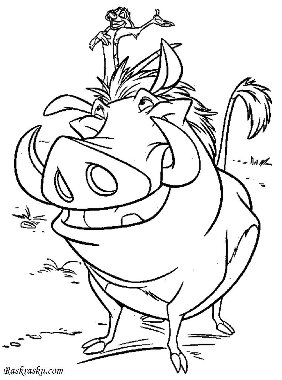 Раскраска Пумба и Тимон, мультфильм. Скачать .  Распечатать