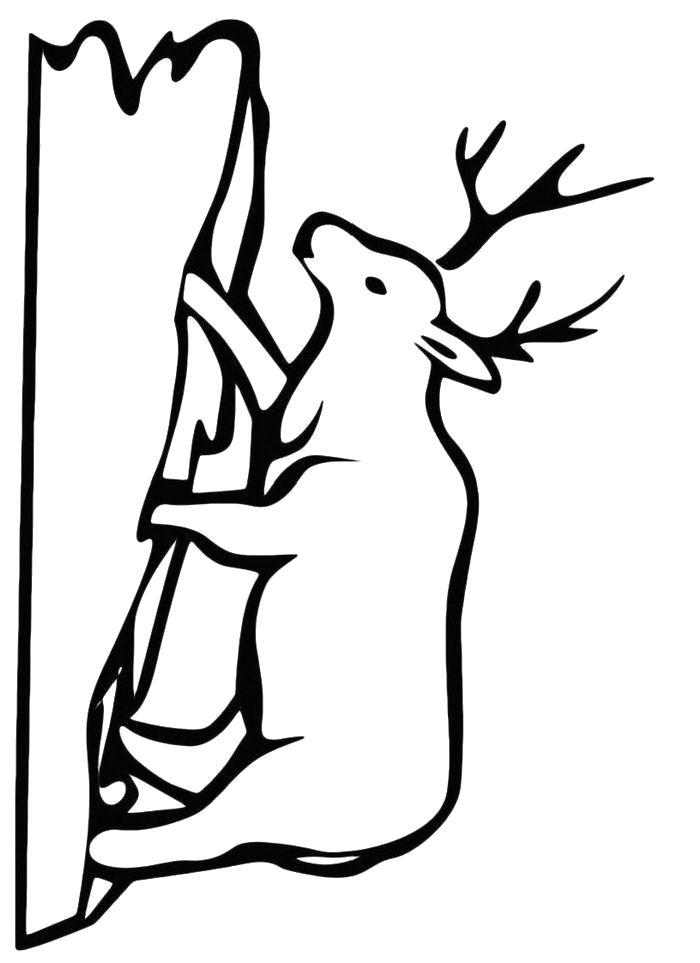 Раскраска  Нарисованный олень. Скачать .  Распечатать