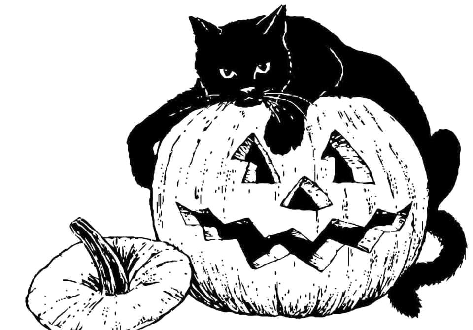 Раскраска праздник Хэллоуин,  кошка лежит на тыкве, лицо из тыквы. Скачать .  Распечатать