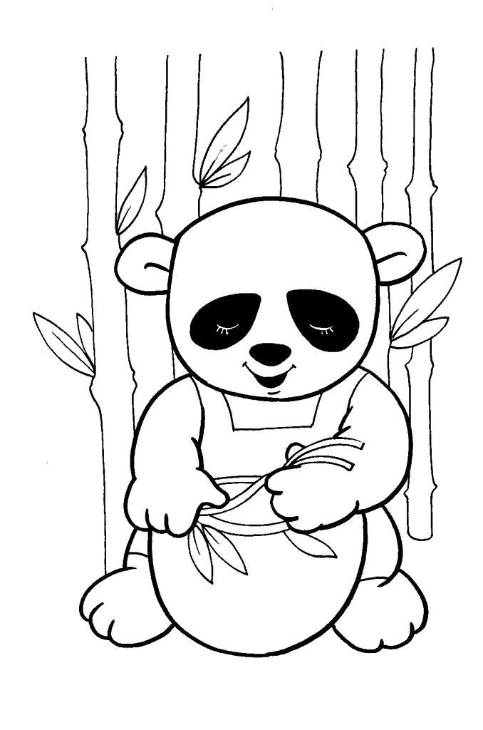 Раскраска  дикие  для детей, маленькая панда, дикие животные. Скачать Панда.  Распечатать Дикие животные