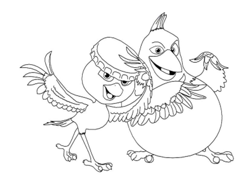 Раскраска Рио , попугайчики. Скачать Рио.  Распечатать Рио