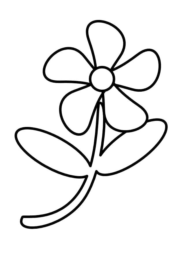 Раскраска Простой цветочек. Скачать Цветок.  Распечатать Цветок