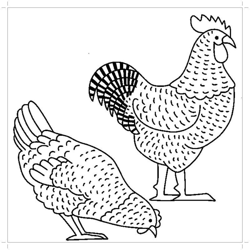Раскраска  петух и курица. Скачать Курица.  Распечатать Курица