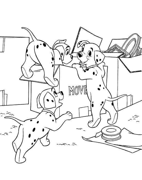 Раскраска Разукрашки 101 далматинец для детей, собаки играются с коробкой. Скачать 101 далматинец.  Распечатать 101 далматинец