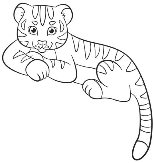 Раскраска Тигрёнок. Скачать животных.  Распечатать животных