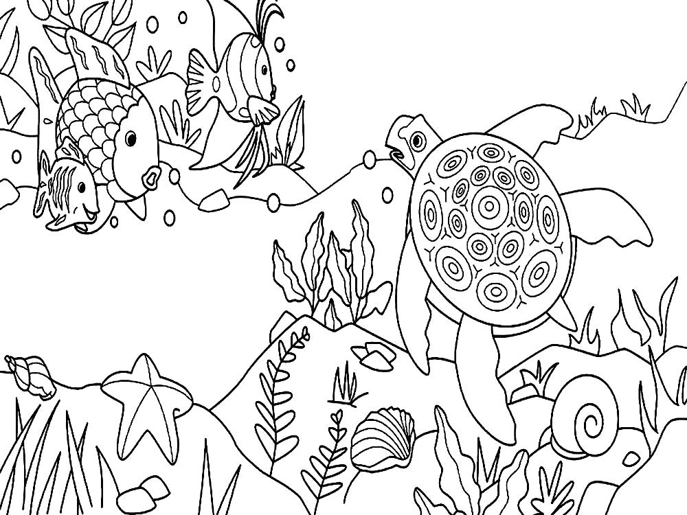 Раскраска  морские обитатели. Скачать .  Распечатать