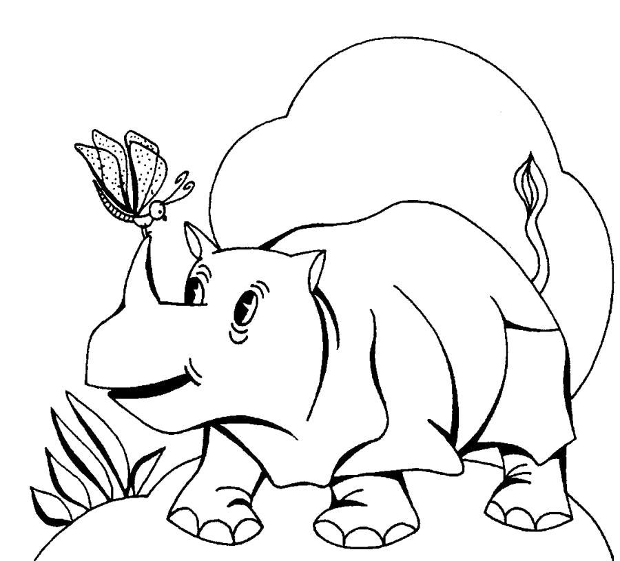 Раскраска Носорог и бабочка . Скачать Носорог.  Распечатать Дикие животные