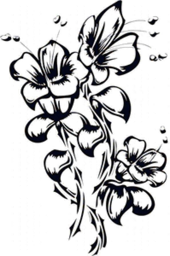 Раскраска Чудные лилии. Скачать Цветы.  Распечатать Цветы