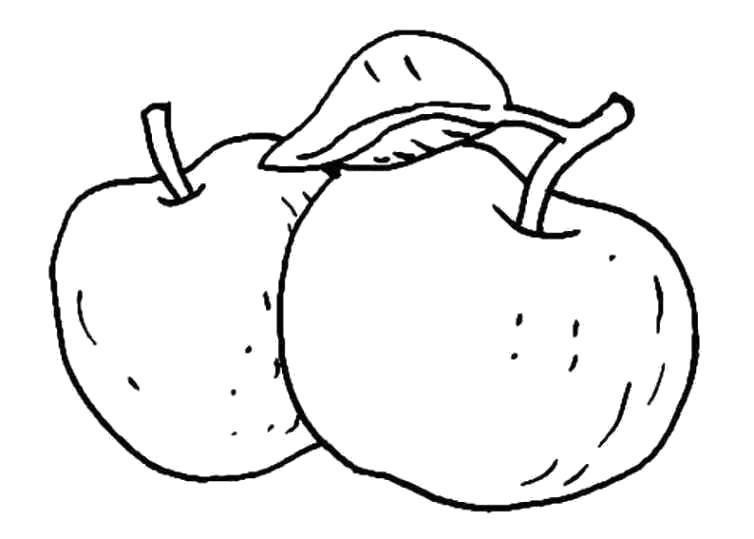 """Раскраска  """"яблоко"""" . Скачать яблоко.  Распечатать Фрукты"""