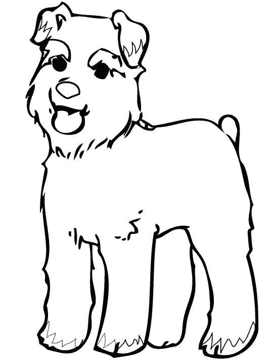 Раскраска Милашка щенок. Скачать Собака, Щенок.  Распечатать Домашние животные
