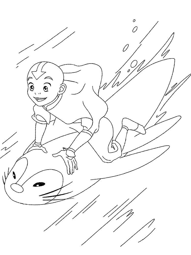 Раскраска  аватар Аанг на тюлене. Скачать Аватар.  Распечатать Аватар