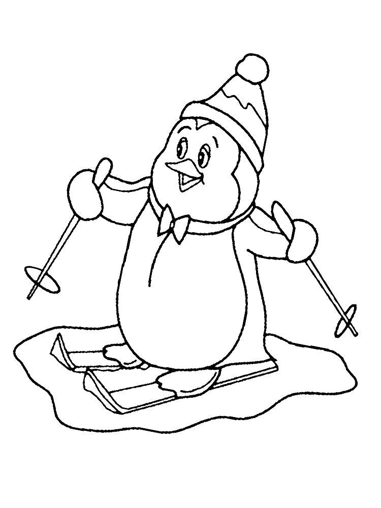 Раскраска Пингвин на лыжах. Скачать Пингвин.  Распечатать Пингвин