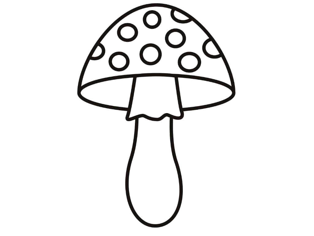 Раскраска  гриб мухомор. Скачать гриб.  Распечатать растения