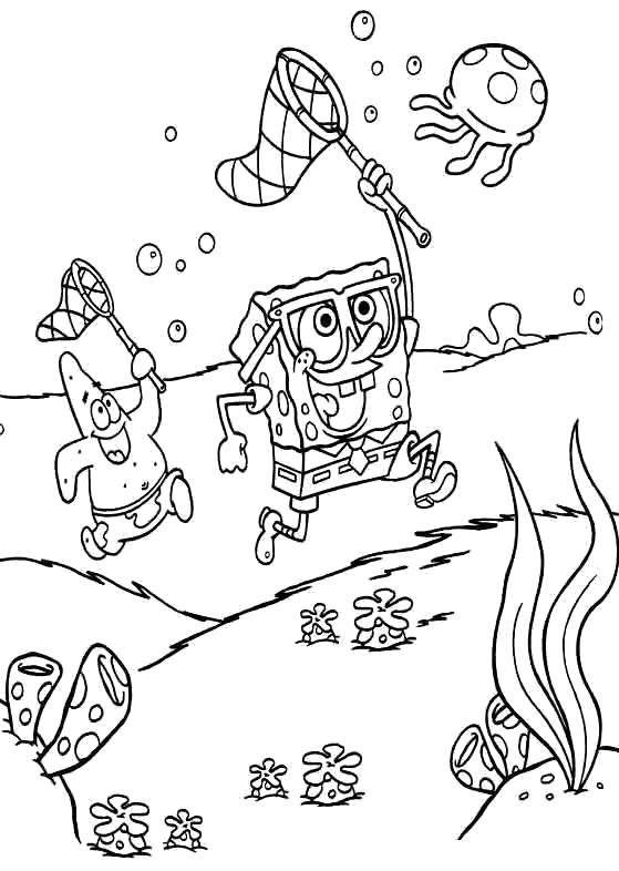 Раскраска Охота на медуз. Скачать Губка Боб.  Распечатать Губка Боб