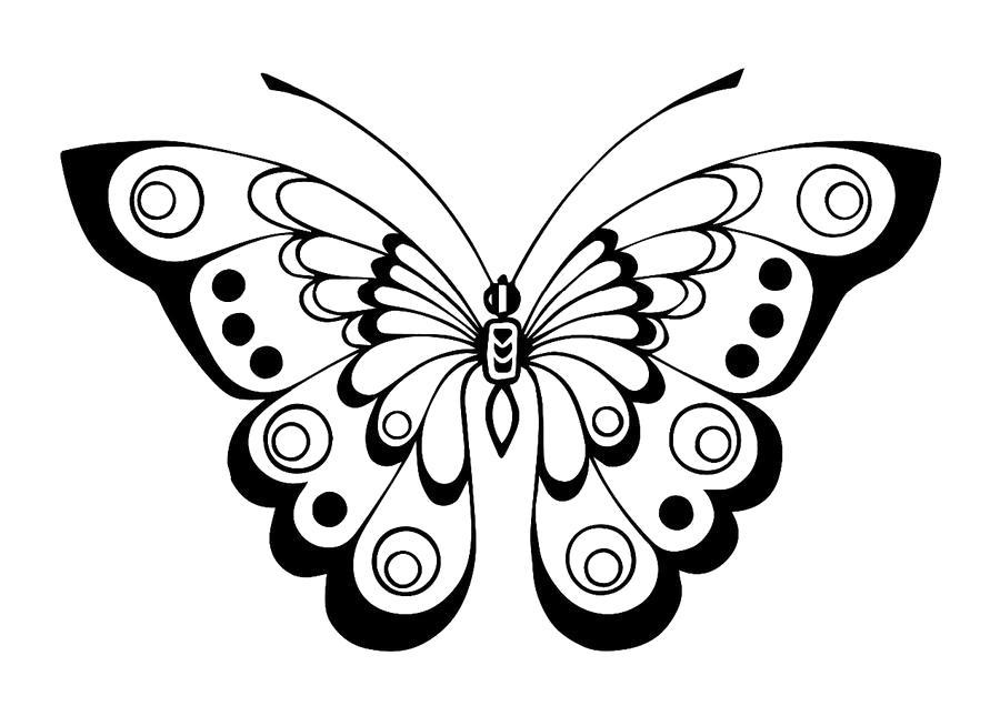 раскраски бабочка страница 4