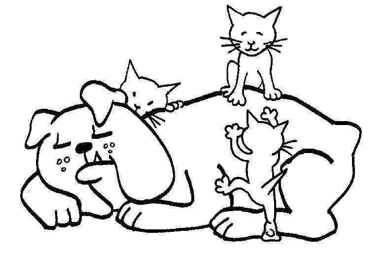 Раскраска Котята на бульдоге. Скачать кот, кошка, Котенок, Щенок, Собака.  Распечатать Домашние животные