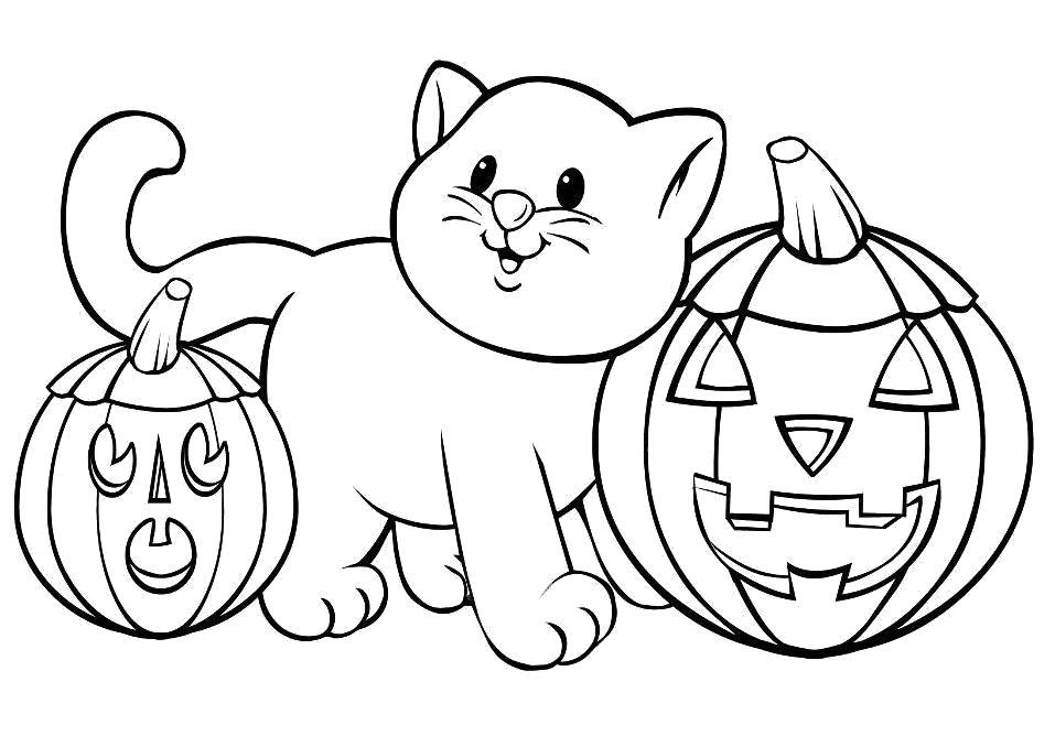 Раскраска Кошка и тыквы. Скачать Котенок, кошка, кот.  Распечатать Домашние животные