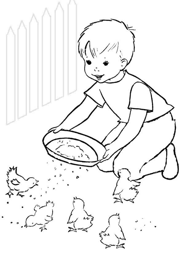 Раскраска мальчик кормит птичек. Скачать Лето.  Распечатать Лето