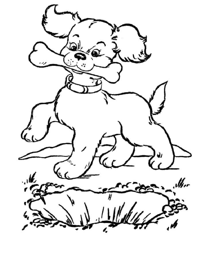 Раскраска  щенок с косточкой. Скачать Щенок.  Распечатать Щенок