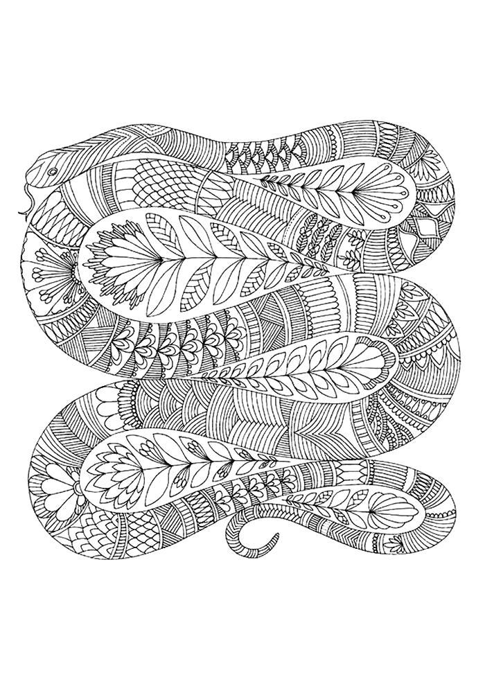 Раскраска  антистресс змея. Скачать Змея.  Распечатать Дикие животные