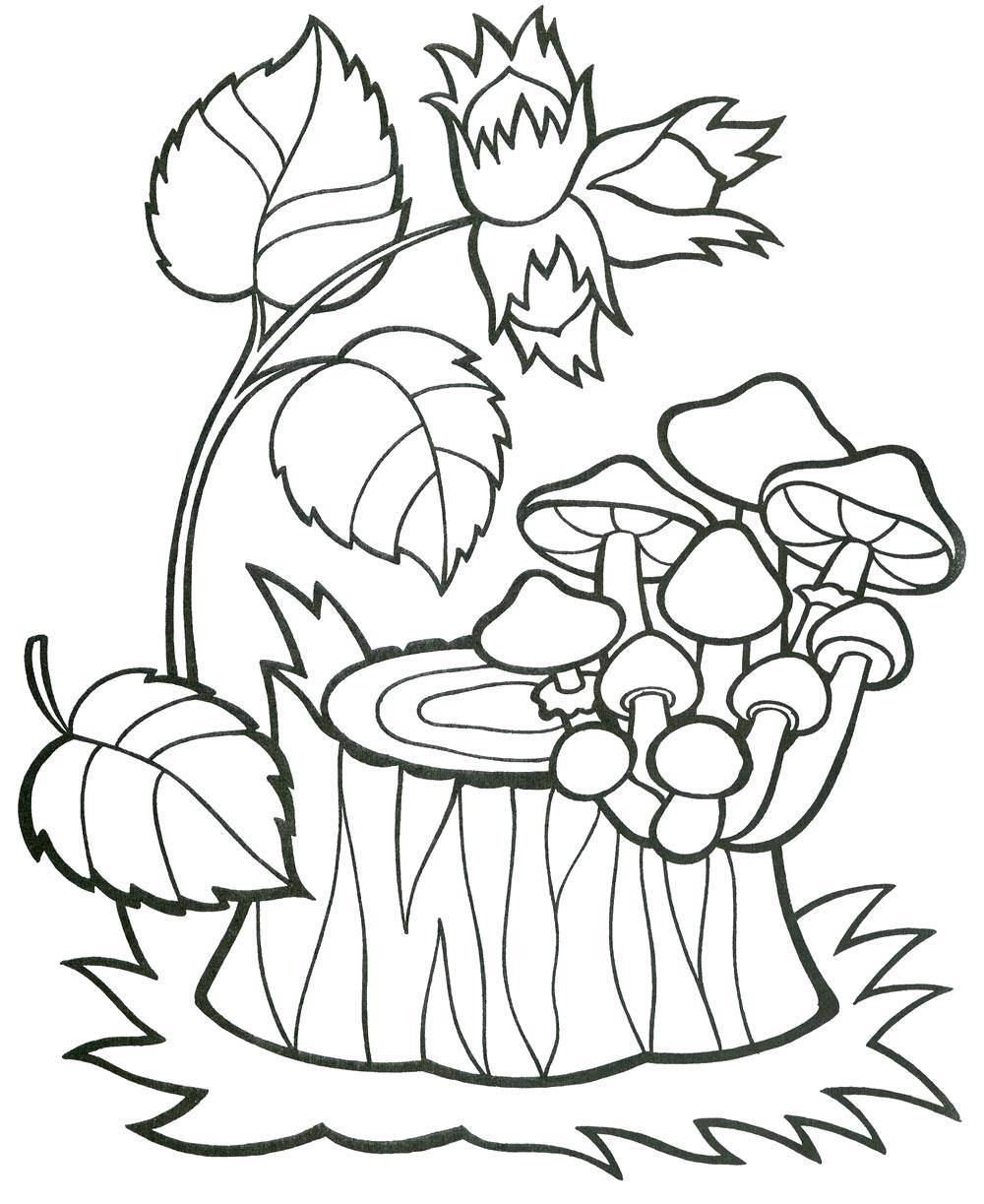 Название: Раскраска Древесные грибы на пне. Категория: . Теги: .