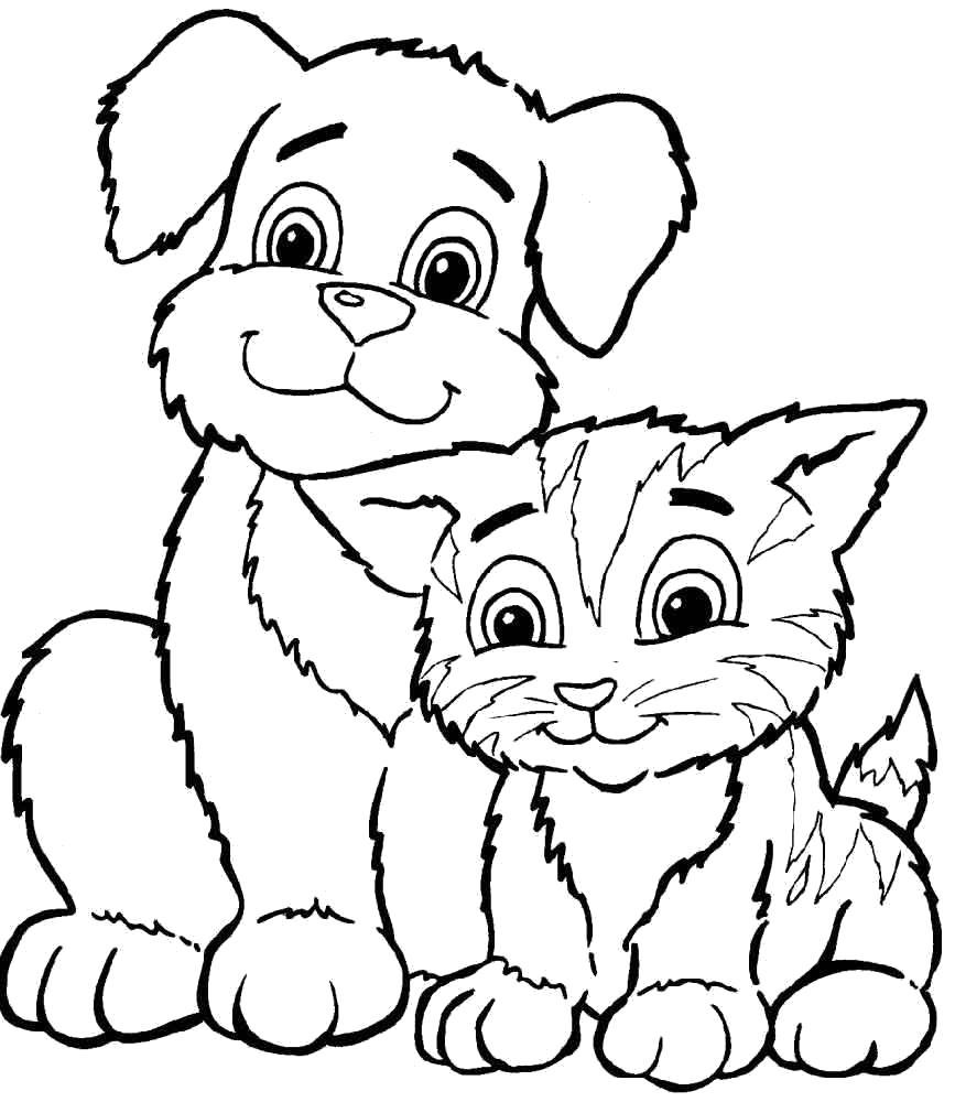 Раскраска Щенок и котик. Скачать .  Распечатать