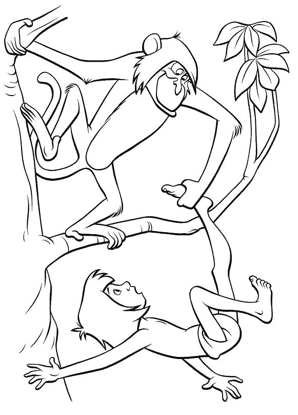 Раскраска Игры на деревьях. Скачать книга джунглей.  Распечатать книга джунглей