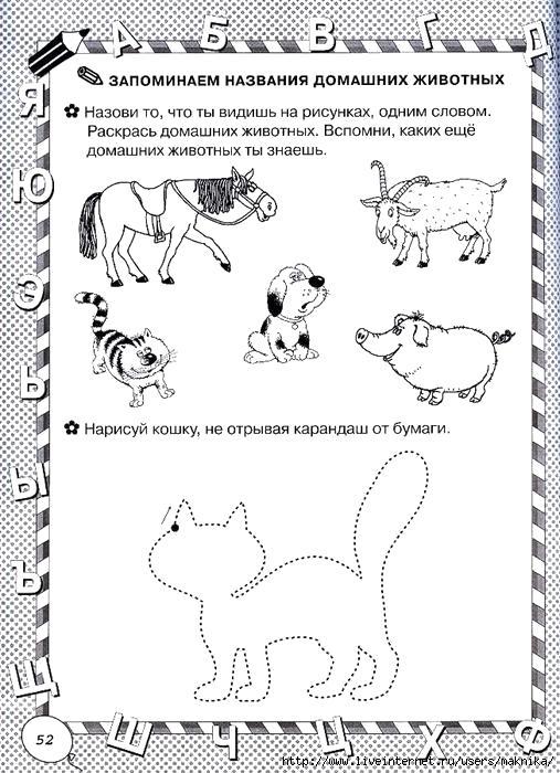 Раскраска  домашних животных, развивающая  . Скачать Задания.  Распечатать Задания
