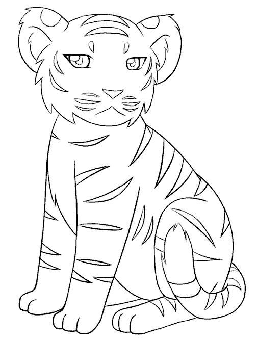 Раскраска красавец тигренок. Скачать Тигр.  Распечатать Дикие животные