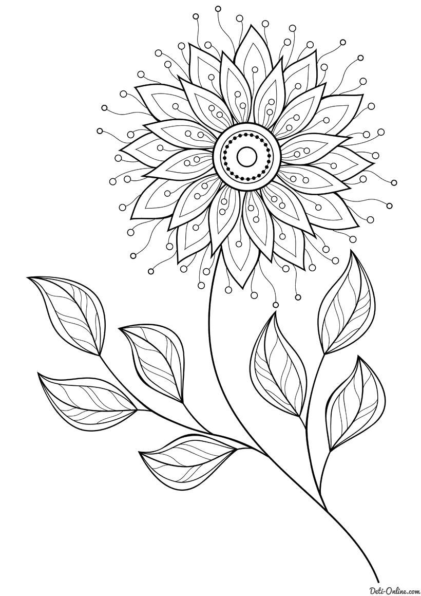 Раскраска  Изящный цветок. Скачать Цветок.  Распечатать Цветок