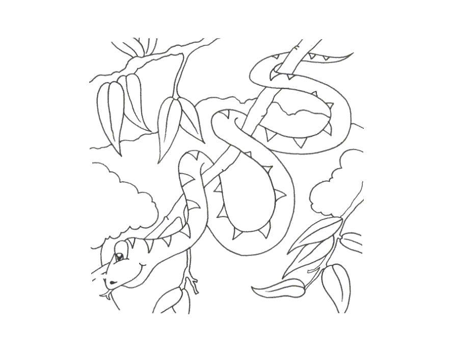 Название: Раскраска Раскраска змея ребенку. Питон. Категория: Змея. Теги: Змея.