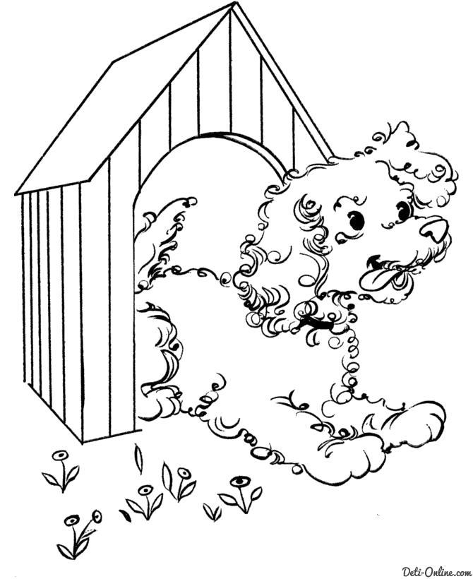 Раскраска  Собака выглядывает из будки. Скачать Собака.  Распечатать Собака