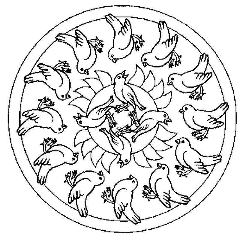 Раскраска Птички. Скачать Мандалы.  Распечатать Мандалы