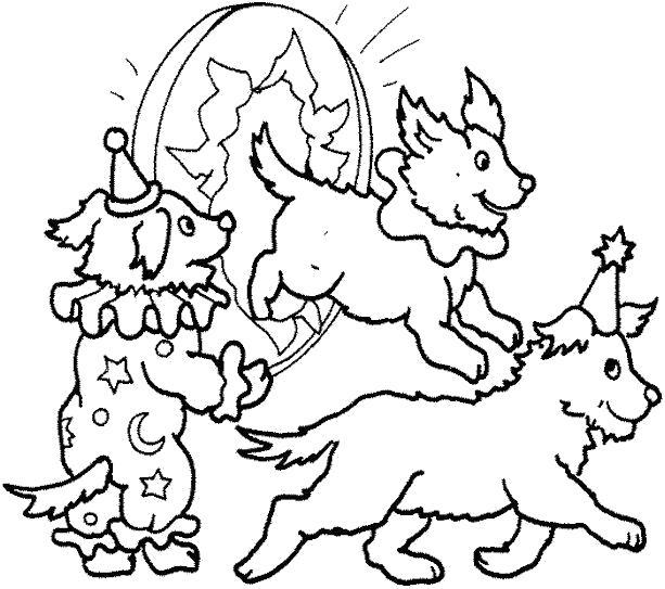 Раскраска дрессированные собачки . Скачать Щенок.  Распечатать Домашние животные