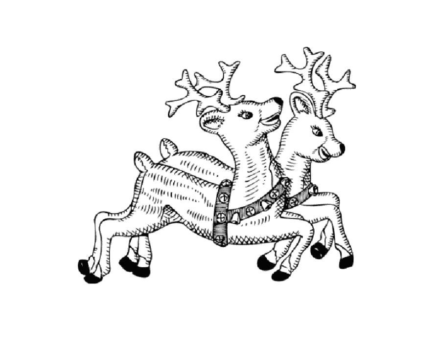 Раскраска  два бегущих олененка. Скачать Олень.  Распечатать Дикие животные