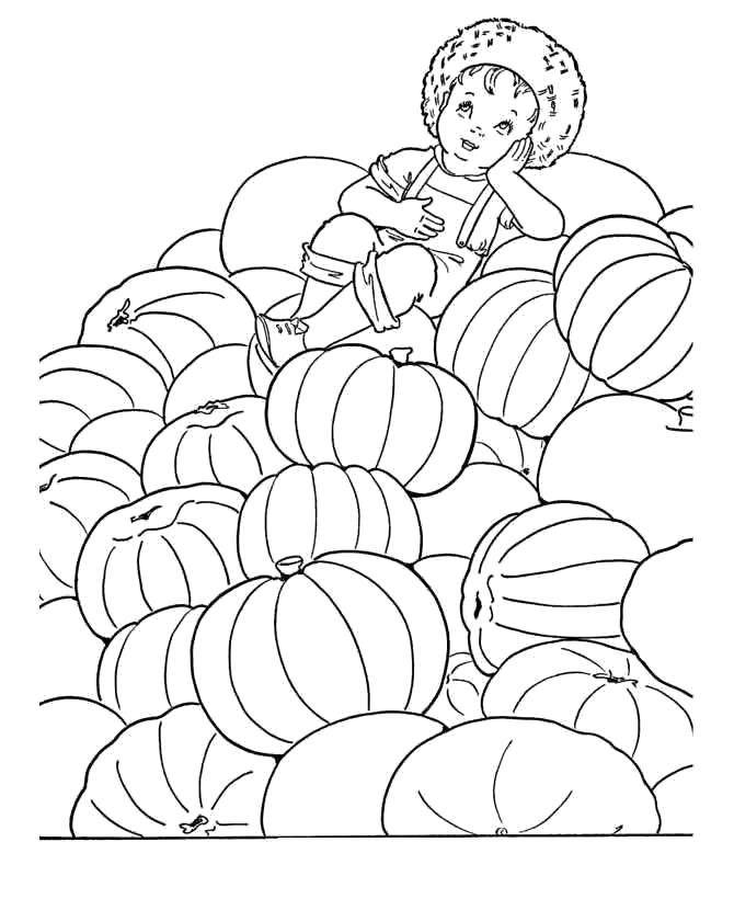 Раскраска много тыкв. Скачать Осень.  Распечатать Осень