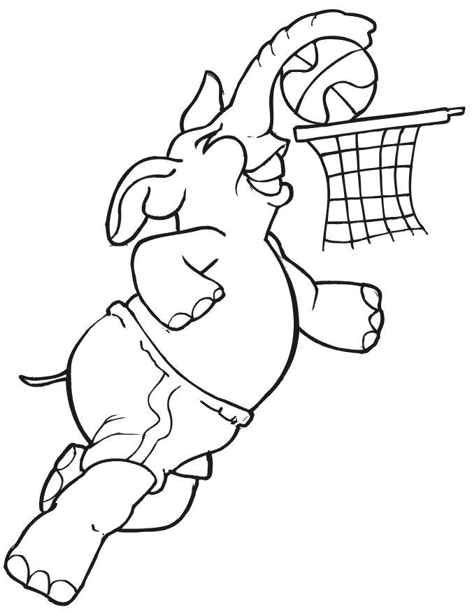 Раскраска  слоник играет в баскетбол. Скачать слон.  Распечатать Дикие животные