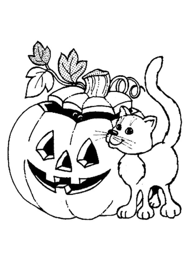 Раскраска  на Хэллоуин. кот около тыквы. Скачать тыква на хэллоуин.  Распечатать Хэллоуин