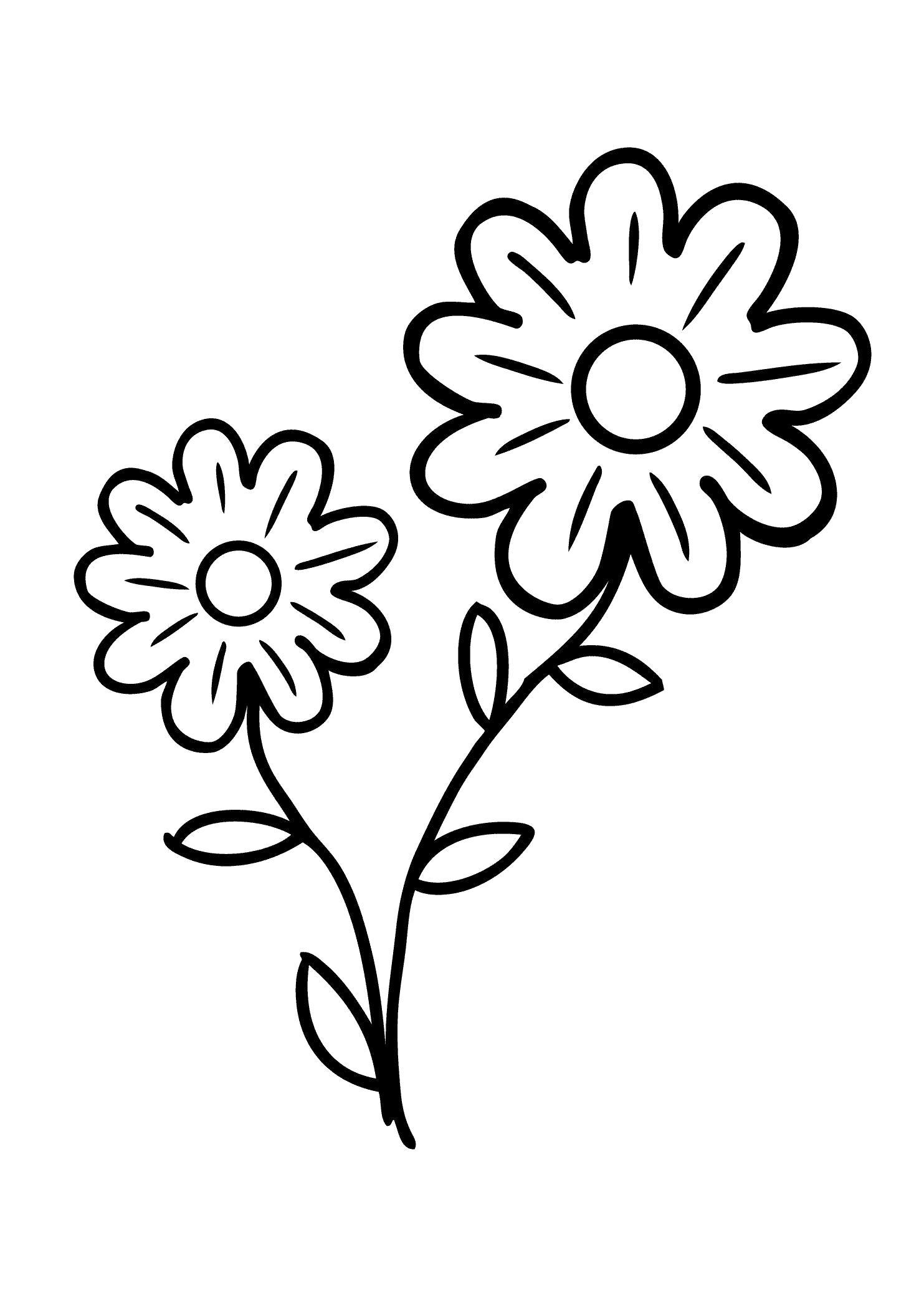 Раскраска Милые цветы. Скачать Цветы.  Распечатать Цветы