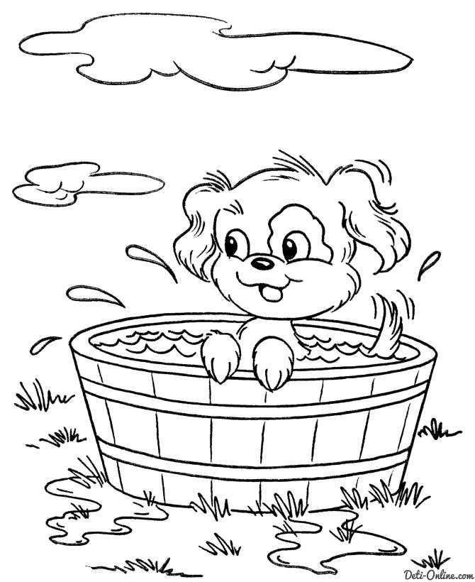 Раскраска  Собачка плескается в ванночке. Скачать Собаки.  Распечатать Собаки
