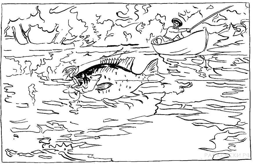 Раскраска Рыбак в лодке поймал карася. Скачать .  Распечатать