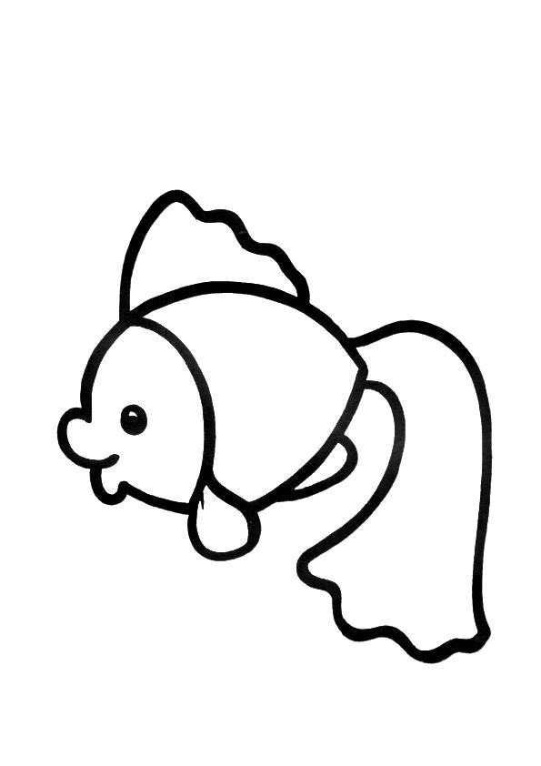 Раскраска Милая рыбка. Скачать рыба.  Распечатать рыба