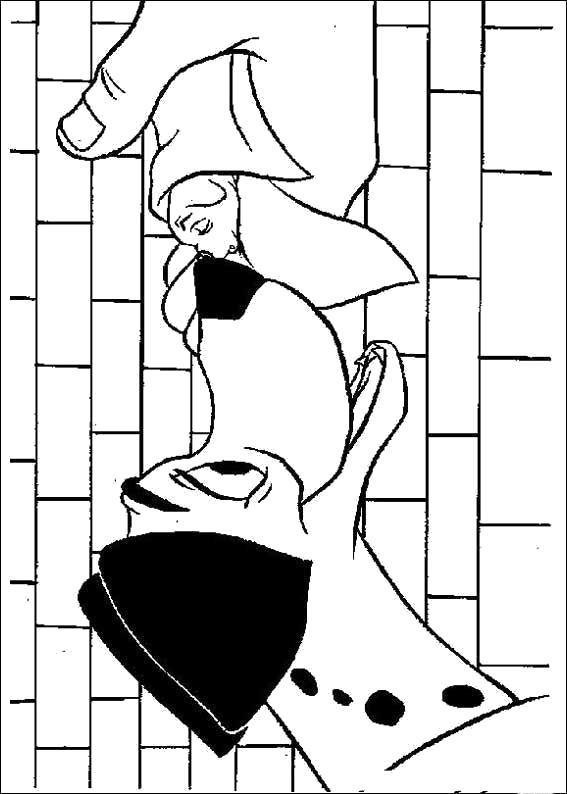 Раскраска  для детей - 101 далматинец, собака нюхает платок. Скачать 101 далматинец.  Распечатать 101 далматинец