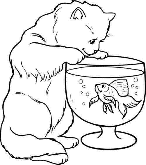 Раскраска  Киса ловит рыбу в маленьком аквариуме. Скачать Рыбы.  Распечатать Морские животные